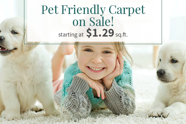 Pet Friendly Carpet on Sale, Starting at $1.29 sq.ft., this month at Associated Abbey Carpet & Floor.