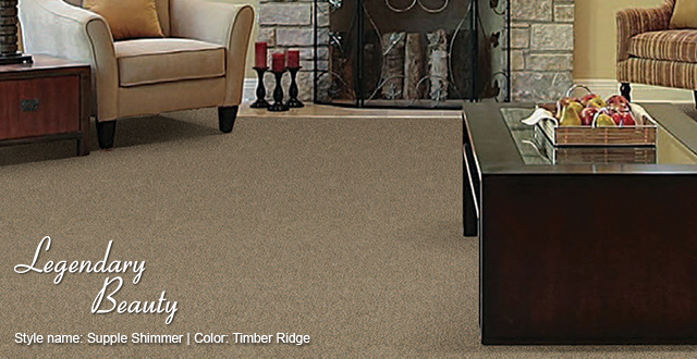 Associated Abbey Carpet Amp Floor Latest Styles In Carpet